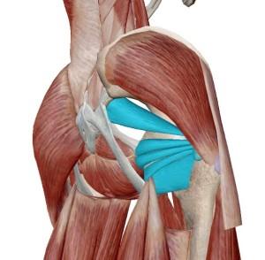 坐骨神経痛3